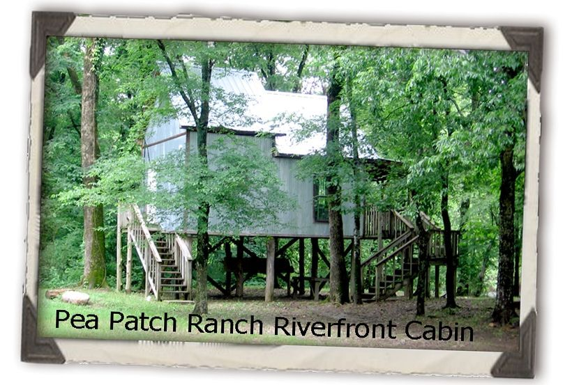 Pea Patch Ranch Cabin